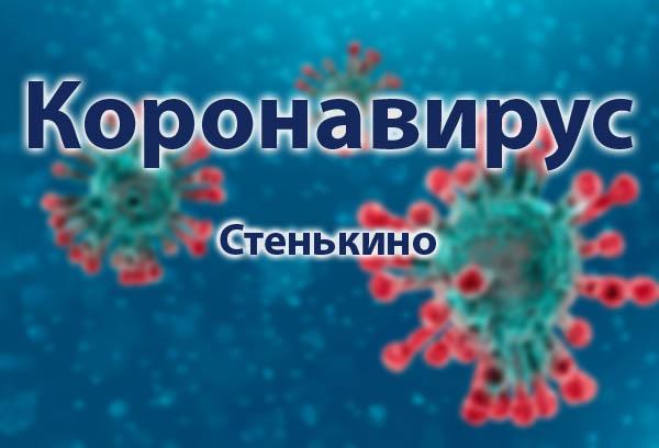 Короновирус в Стенькино