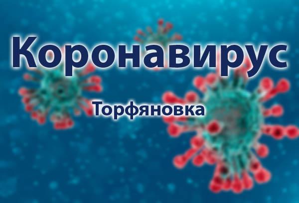 Torfjanovka