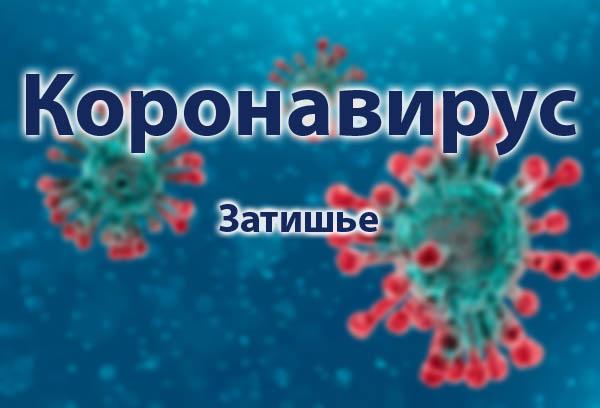 Короновирус в Затишье