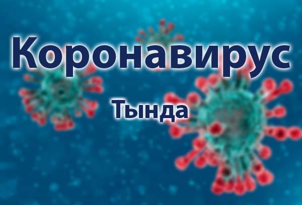 Короновирус в Тынде